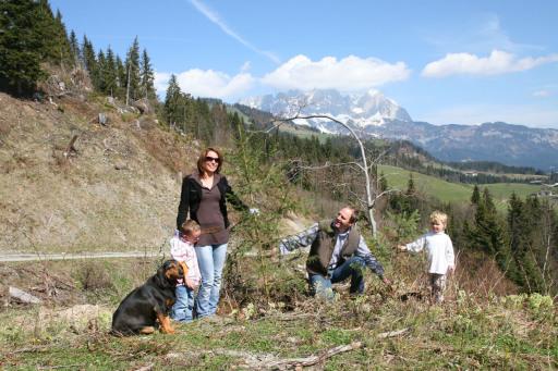 BILD zu TP - Im Landgasthof Reitherwirt und Garni Jagdhof Hubertus erhält jeder Gast ab 4 Tagen Aufenthalt seinen persönlichen Lebensbaum.