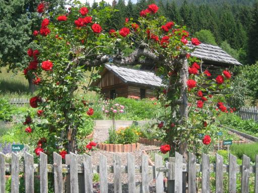 Wild- und Gartenkräuter, Blumen und Blüten sind die Stars im touristischen Angebot. Das Kräuterdorf Irschen wurde dafür auch mit dem Tourismus-Staatspreis 2007 ausgezeichnet.