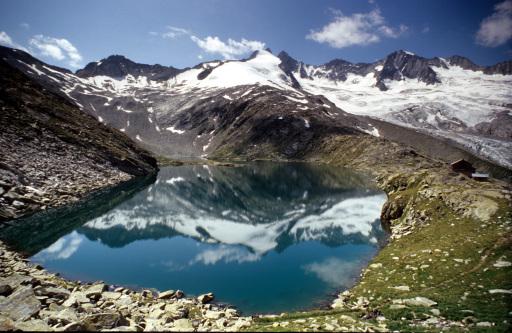 Auch das Umfeld der Zittauerhütte war Untersuchungsgebiet im Rahmen des Tags der Artenvielfalt.