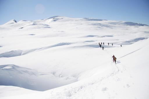 Schneeschuhwandern auf dem Gottesacker / Inspirierende Touren in ganz Vorarlberg