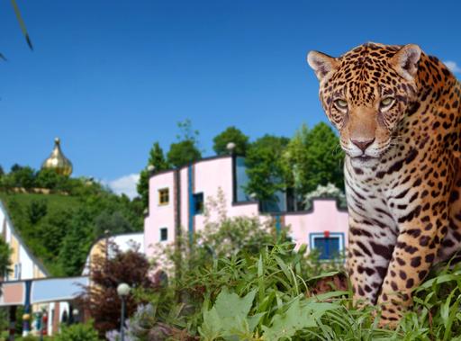 Klimaschutz im Schlaf - Rogner Bad Blumau und WWF