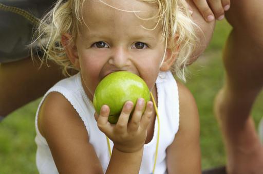 Einige österreichische Betriebe haben sich auf gesunde Ernährung spezialisiert und achten ganz besonders auf die kulinarischen Bedürfnisse der Kinder.