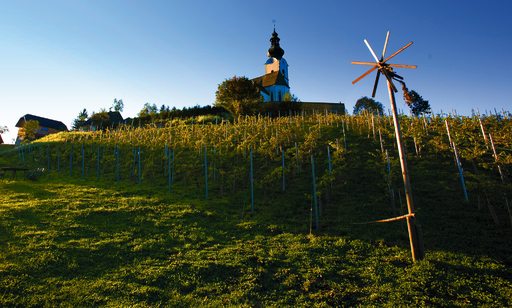 6 Weinbauregionen unterscheidet man in Kärnten. Das im südlichen Kärnten gelegene Trixnertal spielte damals wie heute eine wichtige Rolle im Kärntner Weinleben. Wein wurde schon vor 2500 Jahren hier getrunken.