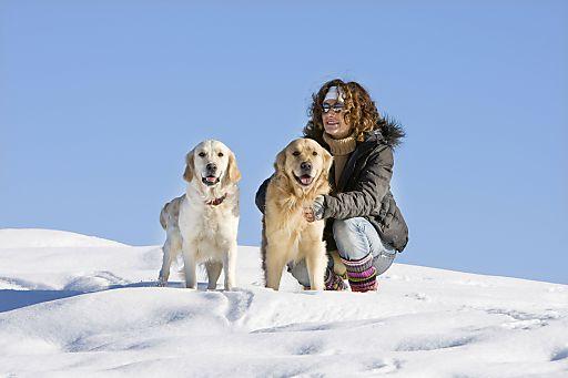 """Den Jahreswechsel genießen in einem der garantiert knallfreien """"Hunde WILLKOMMEN!""""- Häuser auf hunde-urlaub.net. So macht Silvester auch dem Hund Spaß!"""