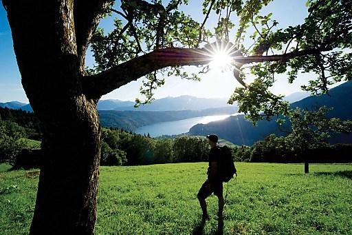 Genusswandern steht am Alpe-Adria-Trail im Vordergrund; Er verläuft im nicht alpinen Bereich und soweit möglich mit geringem Höhenunterschied.