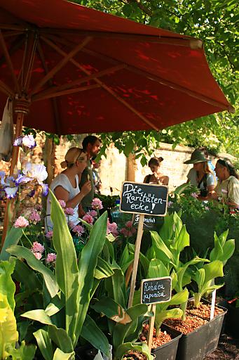 """""""Von 17. - 20. Mai dreht sich bei den Gartentagen auf Schloss Hof alles um ausgesuchte Pflanzenraritäten und exquisite Gartenkultur."""""""