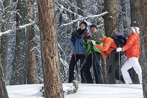 Wildtierbeobachtung mit Nationalpark-Ranger