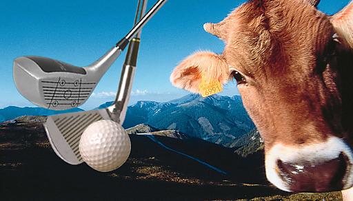 """Charity-Golf """"Nearest to the Kuhfladen"""" auf der Turracher Höhe"""