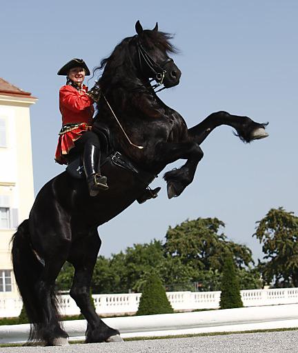 Reitkunst in barocker Kulisse - Das Große Pferdefest auf Schloss Hof