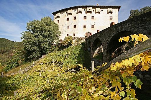 """2006 haben die Gärten von Schloss Trauttmansdorff die Patenschaft über die Rebe """"Versoaln"""" bei Castel Katzenzungen übernommen."""