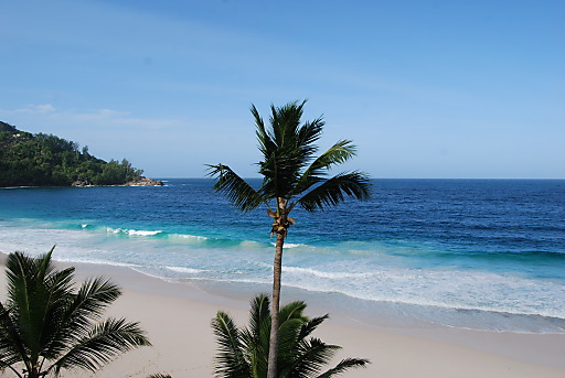 Immerwährender Hochsommer, üppige Vegetation, Traumbuchten und Puderzuckerstrände: Die 115 Inseln Seychellen sind ein traumhaftes Urlaubsziel.