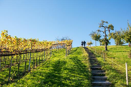 Zürich Tourismus Wanderweg