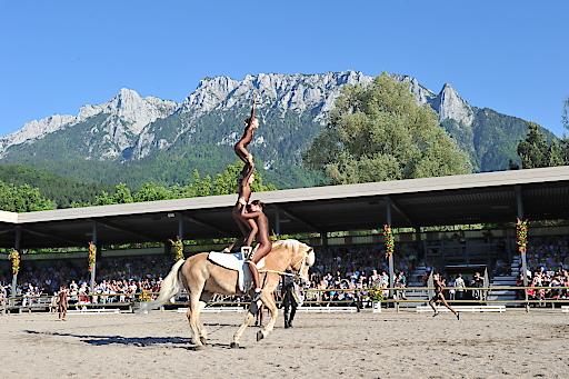Haflinger Weltausstellung 04.06.-07.06.2015 in Ebbs/Tirol