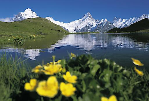 Bachalpsee, Berner Oberland