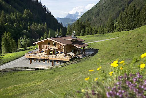 Pulvermacherscherm im Hörndlinger Graben bei Fieberbrunn, Kitzbüheler Alpen.