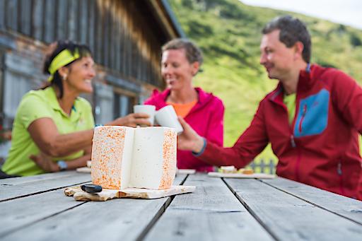 Wanderung über den Gantekopf zur Alp Nova, regionale Käsespezialität, Montafoner Sura Kees, Vorarlberg, Montafon, Wandern, Sommerurlaub, Bergsommer, Berge, Panorama