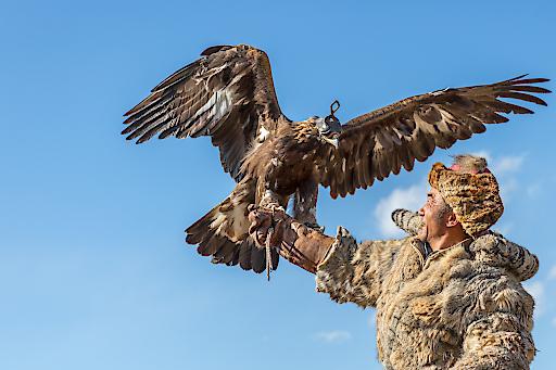 Portait eines Mongolen mit Adler