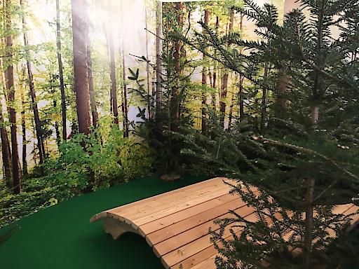 Bänke mitten im Wald laden zum Waldbaden