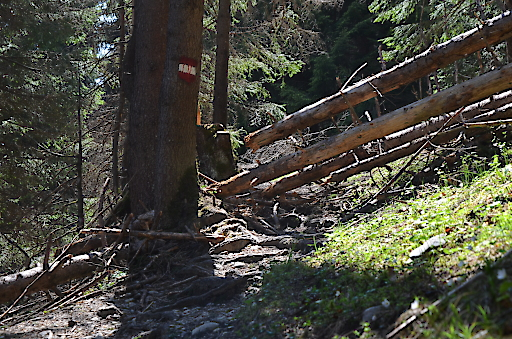 Wegeschäden in Tirol – am Weg zwischen Rumeralm und Vintlalm.