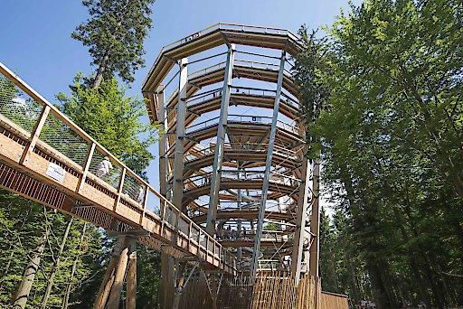 Markantes Landmark der Baumwipfelpfade: der Aussichtsturm, 40 m über dem Waldboden. Das Erlebnisfernrohr VIScope ist Teil dieser unterhaltsam-lehrreichenInszenierung der bayerischen Erlebnis Akademie.