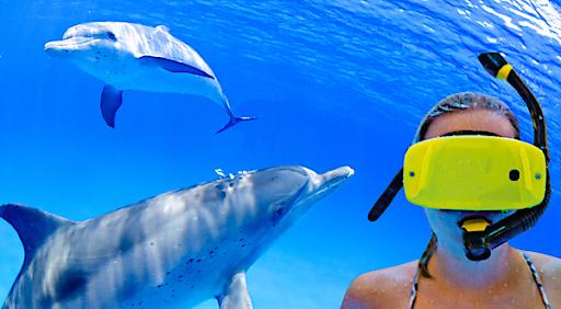 Ab sofort tauchen Badegäste mittels Virtual-Reality-Schnorchelbrillen in die unendlichen Weiten der Weltmeere ein.