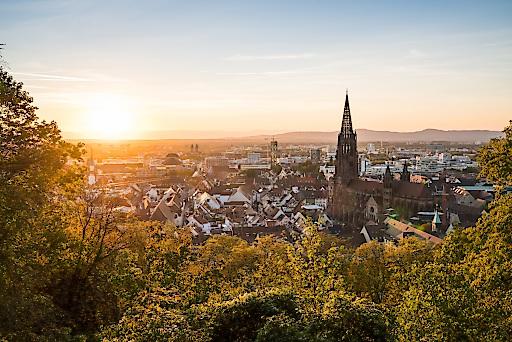 Blick auf Freiburg (Credit: FWTM_Baschi Bender)