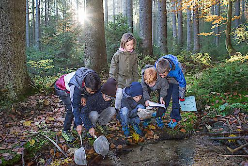 Kinder forschen und werkeln im Wald