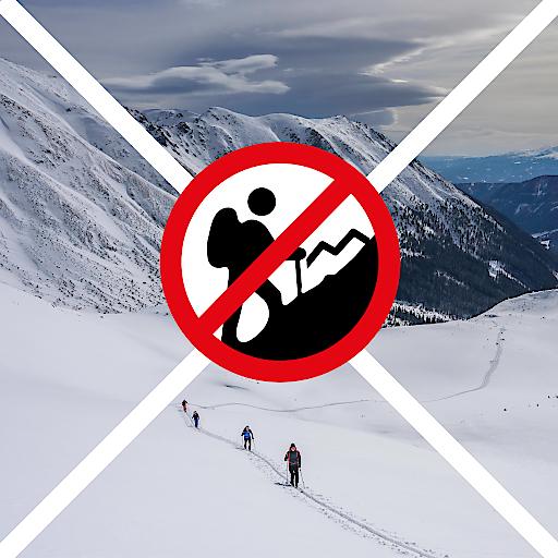 """""""Für Skitourengeher und Bergsportler ist gerade jetzt ein risikoarmes Verhalten essenziell. Wir bitten weiterhin um ein solidarisches Verhalten. Verzichtet gerade jetzt auf Skitouren oder Bergtouren! Der Bergsport birgt ein gewisses Verletzungsrisiko, letztlich werden unnötig Ressourcen und Kapazitäten von Rettern und medizinischem Personal beansprucht"""" so Andreas Schieder, Vorsitzender der Naturfreunde in Österreich."""