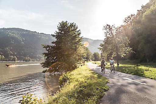 Unterwegs auf dem oberösterreichischen Donauradweg in der Schlögener Schlinge.