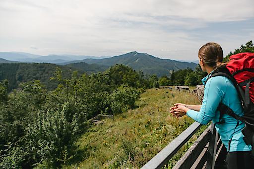 Pilgern Via Sacra-Wiener Wallfahrerweg-Wienerwald