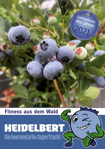 Heidelbert, die beerenstarke Superfrucht.