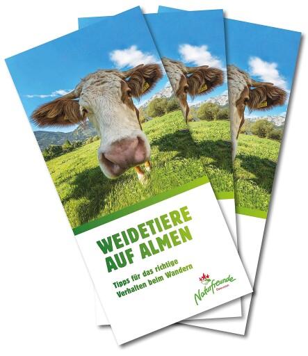 Im Folder Weidetiere auf Almen, geben die Naturfreunde Tipps für eine sichere Wanderung.
